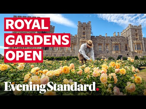 Windsor castle's east terrace garden opens to public for first time in decades