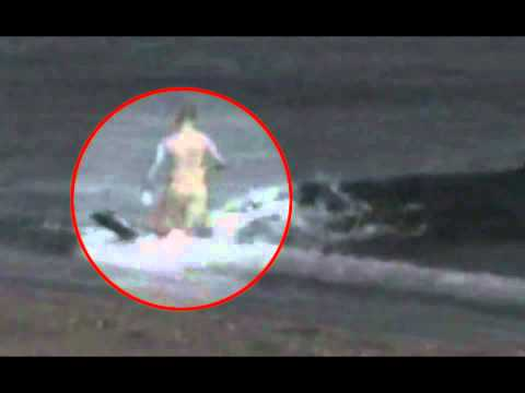 Do not click!!! human gets devoured by whale mammals gone wild!