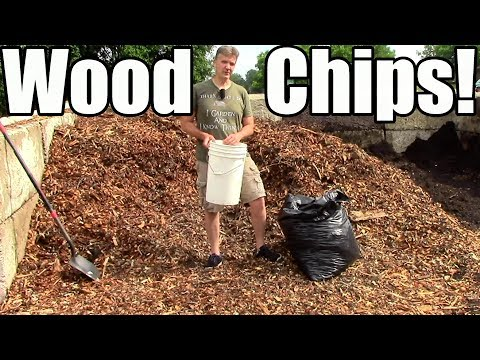 How & why i use wood chip mulch in the garden!