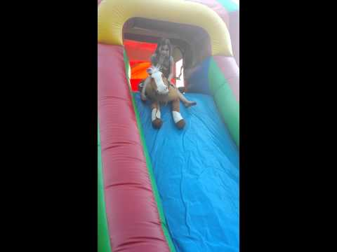 Our horse on the bounce house