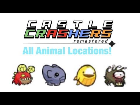 How to get every animal orb/pet in castle crashers