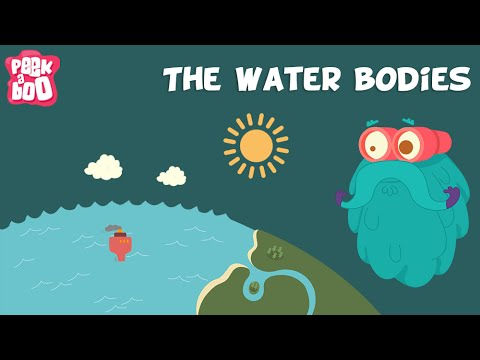 The water bodies   the dr. binocs show   educational videos for kids