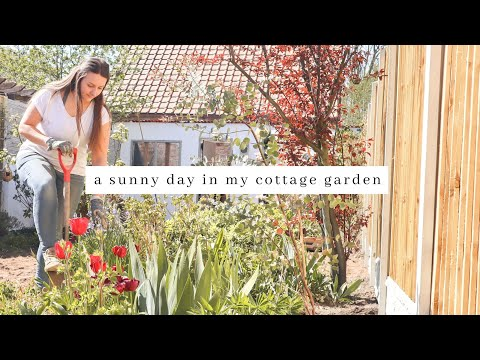A day in my english cottage garden & an evening of self care
