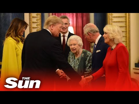 Donald trump is welcomed by prince charles at buckingham palace ahead of meeting with world leaders