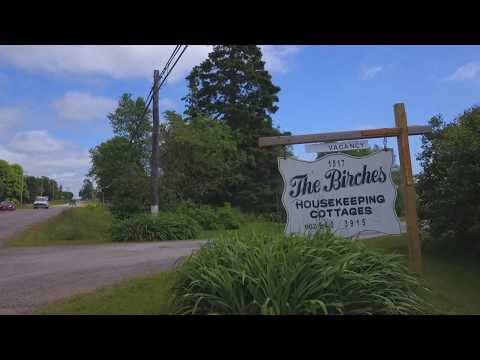 The birches housekeeping cottages