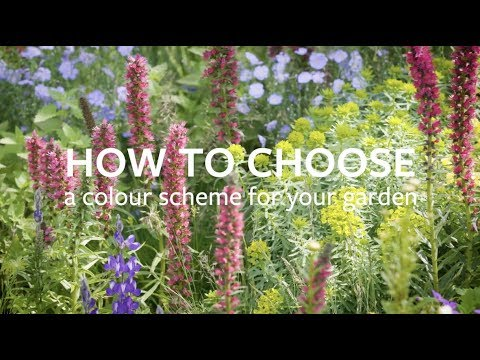 How to choose a colour scheme for your garden | grow at home | rhs